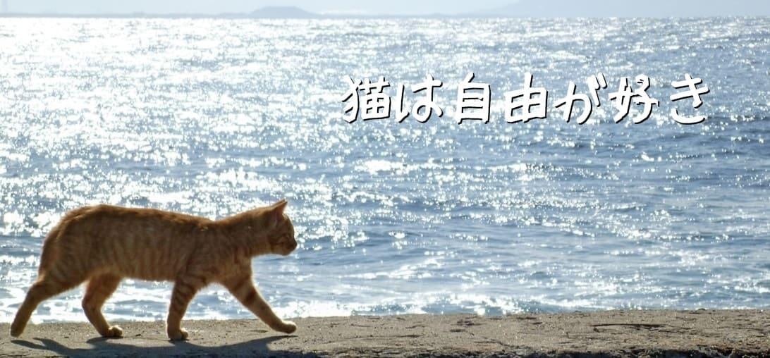 猫は自由が好き